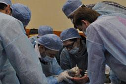 Костнопластическая операция курсы