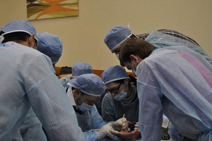 seminar-operaciya-spb-veronika