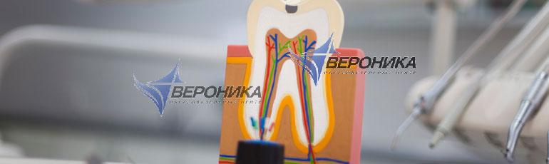 Семинар по стоматологии учебный центр СПб