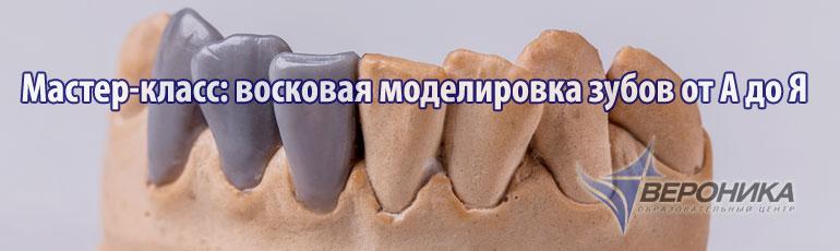 Мастер-класс: восковая моделировка зубов от А до Я